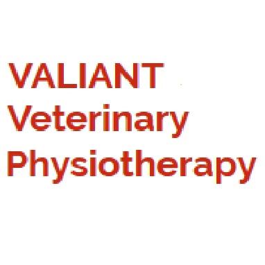 Valiant Vet Physio